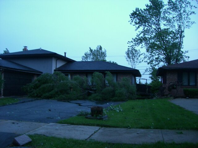 zoo and tornado damage 100.jpg