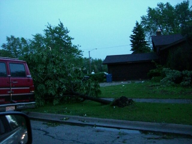 zoo and tornado damage 102.jpg