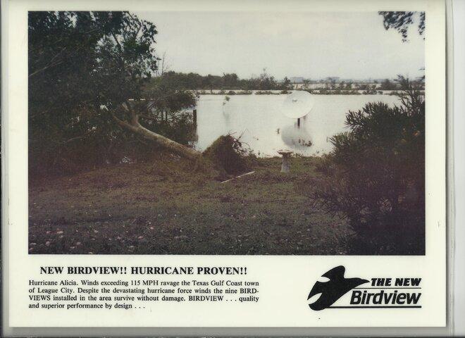 birdview PR pic.jpg